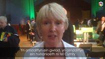 Miniffesto Plaid Cymru