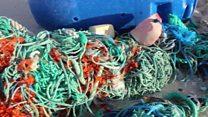 Хенденрсон: остров невезения, весь покрытый пластиком