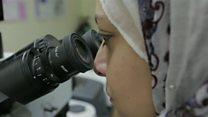 முரண்பட்ட மத்திய கிழக்கில் முன்மாதிரி ஆய்வு மையம்