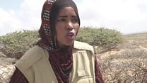 The women saving Somalia's animals