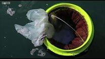 Surfistas criam lixeira flutuante para coletar plástico e lixo dos oceanos