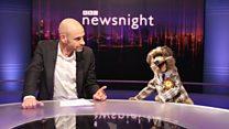Hacker on Newsnight