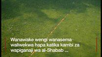 Msitu unaotumiwa na al-Shabab kusafirisha wanawake mateka