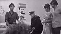 When John Noakes met Lulu the elephant