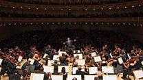 ما معنى عبارة Physical and Mental Impairment و Orchestra؟