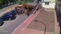 بالفيديو: لحظة انفجار أنبوب مياة بأستراليا