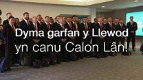 Y Llewod yn canu Calon Lân