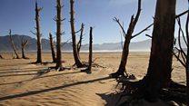 En Afrique du Sud, Capetown frappé de sa pire sécheresse depuis un siècle