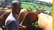 Why this globetrotting young farmer came home