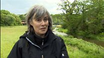 River Teifi pollution investigated