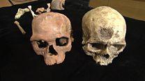 'Oldest' fossils of Homo sapiens