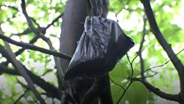Watch: A plague of poo bags in London's beauty spots