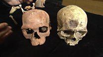 Найдены самые древние останки Homo sapiens