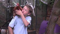 Boy launches free-range egg crusade
