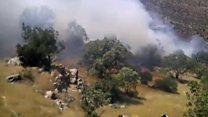 آتش، به جان جنگلهای غرب ایران افتاده است