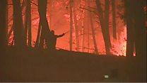 У Португалії три дні жалоби за загиблими в лісовій пожежі