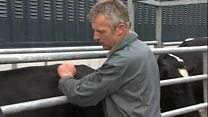TB approach 'needs to be targeted'