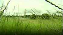 Humber estuary sounds recorded for City of Culture project