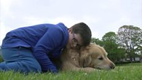 Therapy dogs for excluded children in Devon