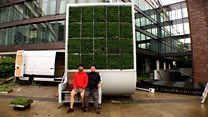 Designers reinvent the tree to beat pollution