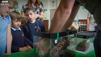 Pupils enjoy 'first-ever Spider School'