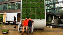 El árbol de musgo alemán creado para absorber contaminación en las ciudades