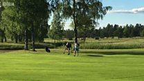 Inyamaswa yirukanye umugabo ku kibuga cya golf