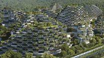 Місто-ліс: більше дерев, ніж людей