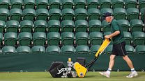 What's going on with the grass at Wimbledon?