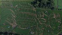 Star Wars-inspired maize maze opens in York