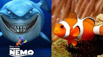 There's something fishy about the plot of Finding Nemo