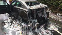 Caminhão cheio de enguias capota e deixa rastro de gosma nos EUA