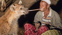 A Harar, la hyène, meilleure amie de l'homme