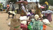 Mji wa Ethiopia ambao wakazi huishi na fisi
