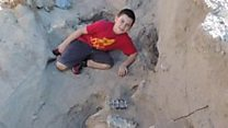 Boy finds million-year-old fossil by tripping over it