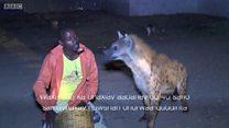 Daawo nin la saaxiibay dhurwaayada magaalada Harar