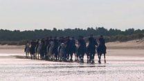Британська кавалерія тренується на пляжі