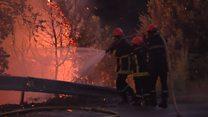Пожежа на Корсиці: нічні кадри