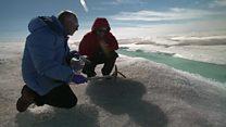 """Arktika buzları gözlənildiyindən """"daha tez əriyir"""""""