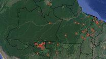 Mapa mostra que 9 em 10 ativistas assassinados no Brasil morreram na Amazônia