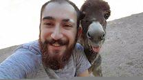 Yürüyemeyen hayvanlara özgürlük veren Mardinli genç