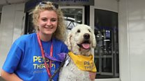 Hospital welcomes furry therapist