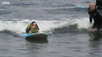 Собаки-сёрферы покоряют океан
