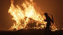 Firefighters try to dampen Corsica flames