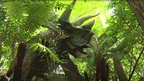 Bats set up home inside dinosaur