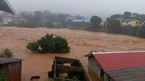 Sierra Leone'deki toprak kaymasında 'yüzlerce kişi ölmüş olabilir'