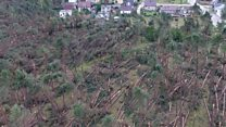 Forests devastated after Poland storms