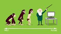 ما معنى كلمة Evolution؟