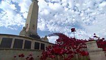 Poppies make wave at Plymouth naval memorial