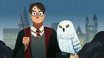 A febre inspirada por 'Harry Potter' que ameaça corujas na Indonésia
